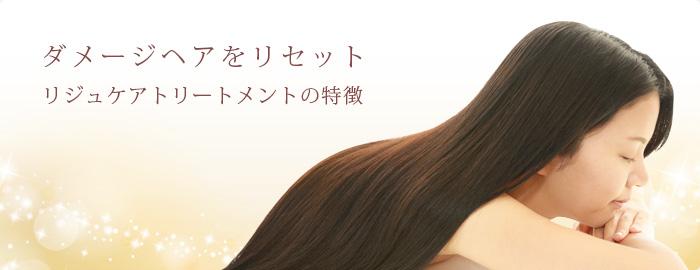 ダメージヘアをリセット リジュケアトリートメントの特徴